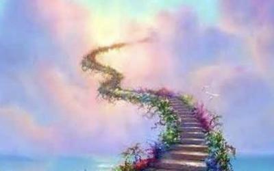 Compassion et accompagnements spirituels pour tous