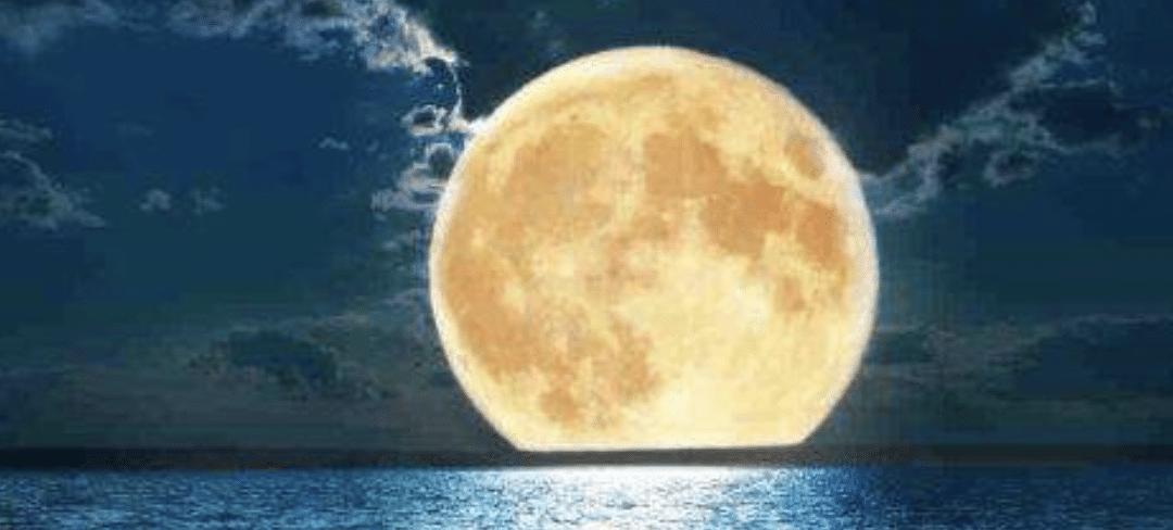 Nouveaux Ateliers – Rentrée 2020 – Nouvelle Lune / Pleine Lune